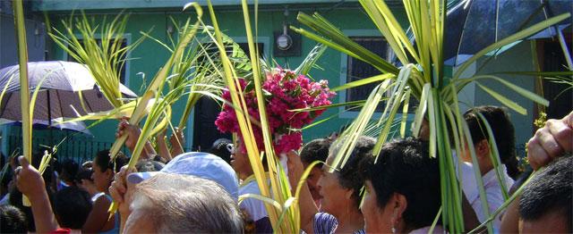 Palmzondag: ons leven in één kernverhaal 1