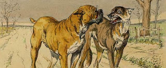 De vleespotten van Egypte en de hond van La Fontaine 1