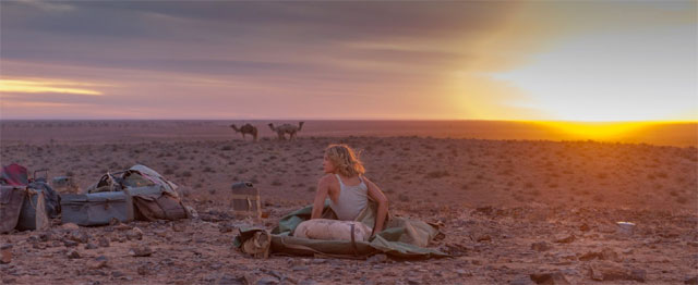 Drukte in de woestijn 1