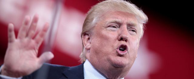 De Trump-storm is door kiezers gezaaid 1