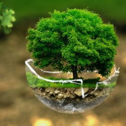 Negen keer mediteren over de ecologische crisis met Bidden Onderweg 1