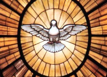 Vaticanum II, Duif in Sint Pieter, Rome