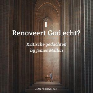 Renoveert God echt? Kritische gedachten bij James Mallon 2