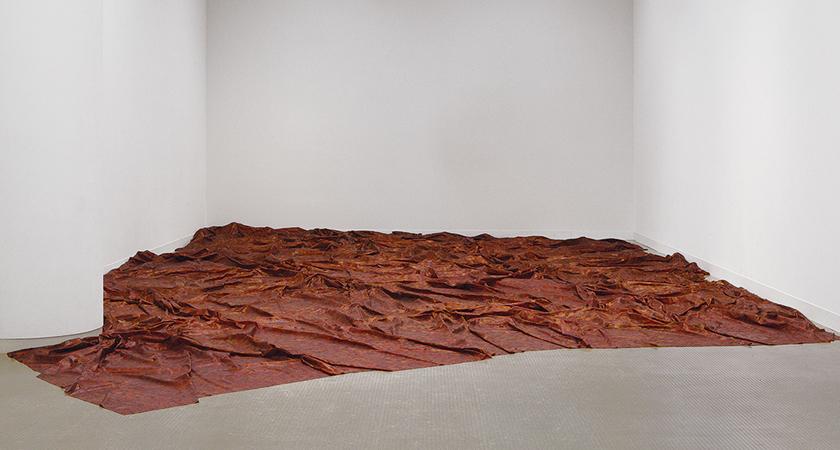 Doris Salcedo maakt kunst als litteken en klankkast
